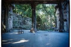 Jardines De La Tropical Exterior
